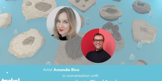 Amanda Rice in conversation with Miguel Amado